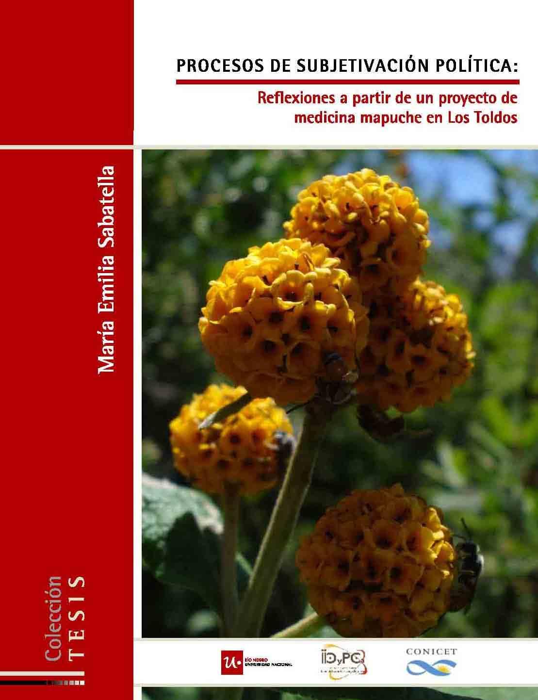 Procesos de subjetivación política. Reflexiones a partir de un proyecto de medicina mapuche en LosToldos