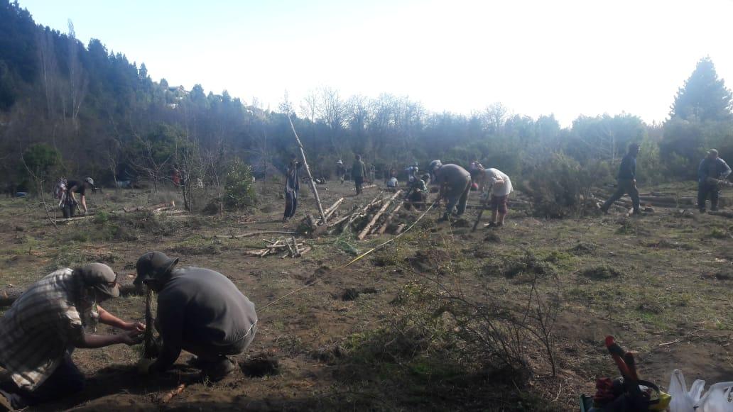 El ejército destruyó la huerta intercultural Pu wen küzawtuküleiñ mapun en la Lof MillaloncoRanquehue